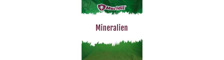 Mineralien für Pferde online kaufen | Maridil Shop