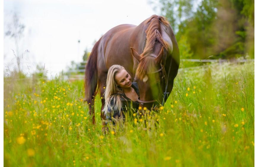 Grundversorgung für Dein Pferd