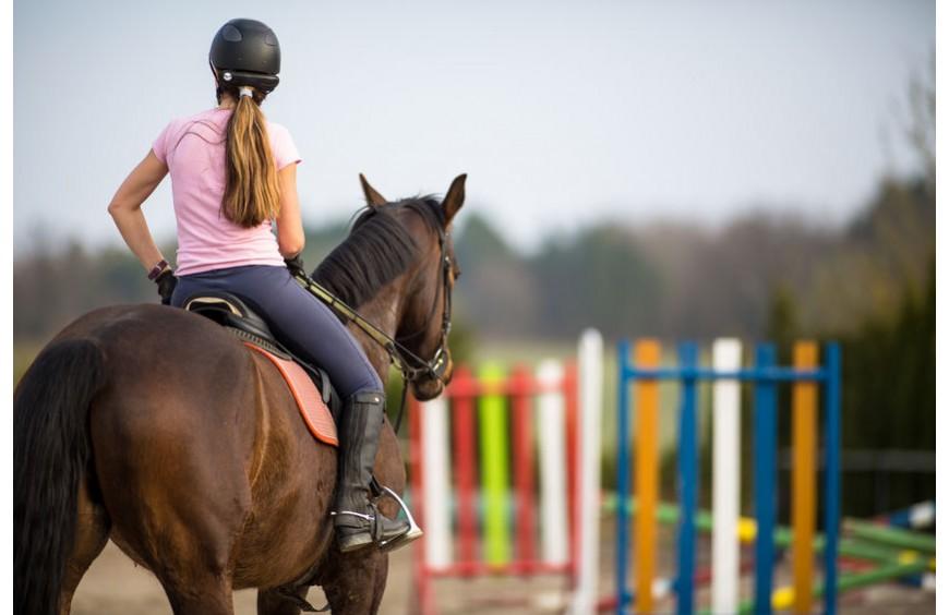 Pferdepflege: Mit Wurminex und Esparsette