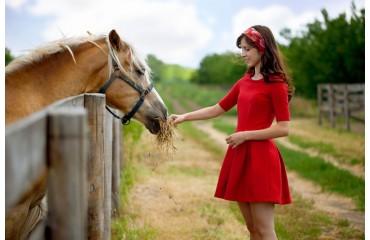 Individuelle Fütterung für Dein Pferd