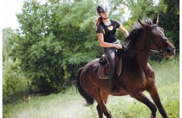 Leckerli beim Training - motiviere dein Pferd mit einer Belohnung
