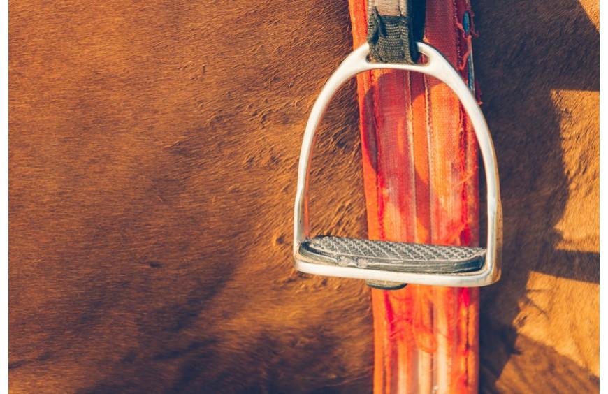 Schenkelweichen und Seitengänge: Tipps für das richtige Training