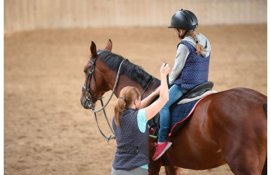 Pferdeausbildung beim Ausritt - Abwechslung und Anforderung zugleich